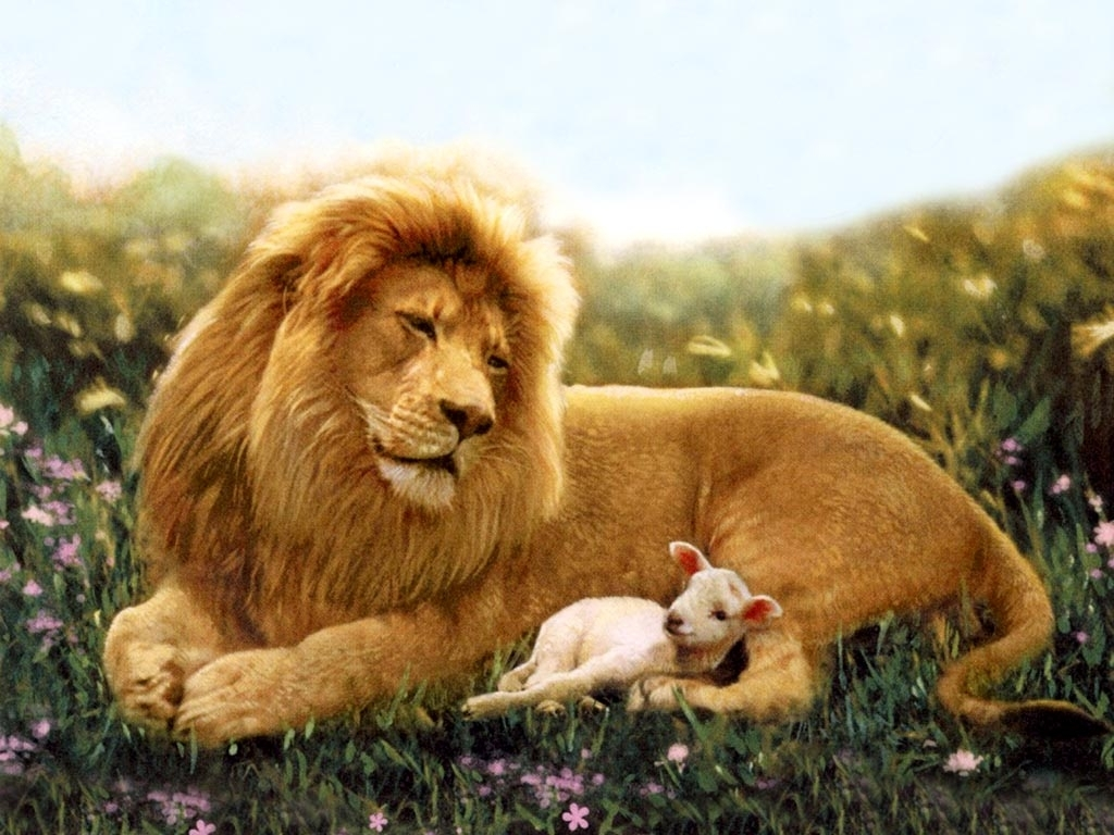 The-Lion-and-the-Lamb